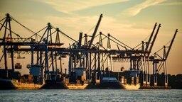 Containerschiffe werden im Hafen bei untergehender Sonne abgefertigt © dpa-Bildfunk Fotograf: Axel Heimken