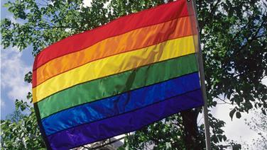 Regenbogenflagge. © picture alliance / Arco Images GmbH Foto: Svarc, P.