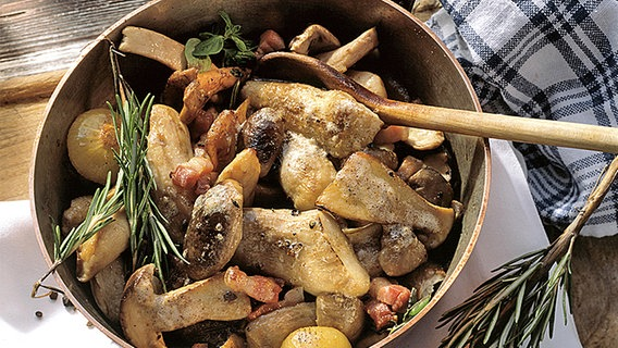 Pilze Richtig Zubereiten Ndrde Ratgeber Kochen Warenkunde