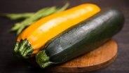Zucchini102 v einspaltig