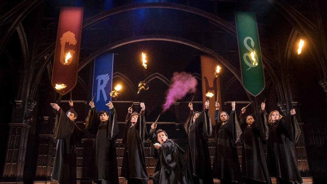 Harry Potter Fernsehen