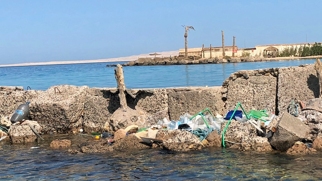 Ägypten macht ernst: Plastikverbot am Roten Meer