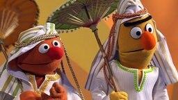 """Ernie und Bert in """"Ali Baba und der vierte Räuber"""" © NDR Fotograf: Torsten Jander"""