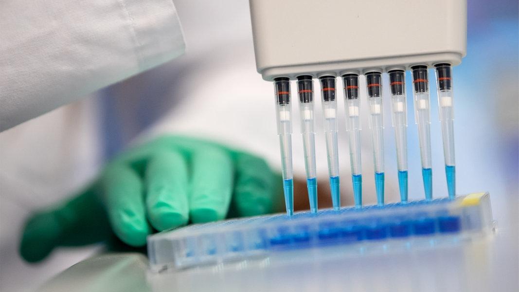 Coronavirus: Zahl an Neuinfektionen in SH bleibt niedrig