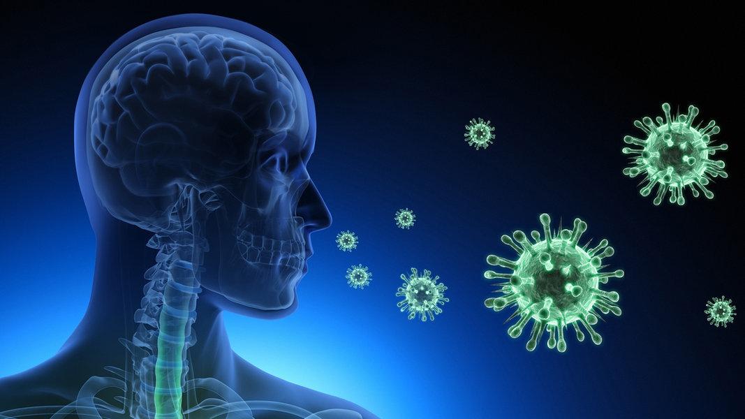 Coronavirus-Live-Ticker: Die Lage im Norden - NDR.de