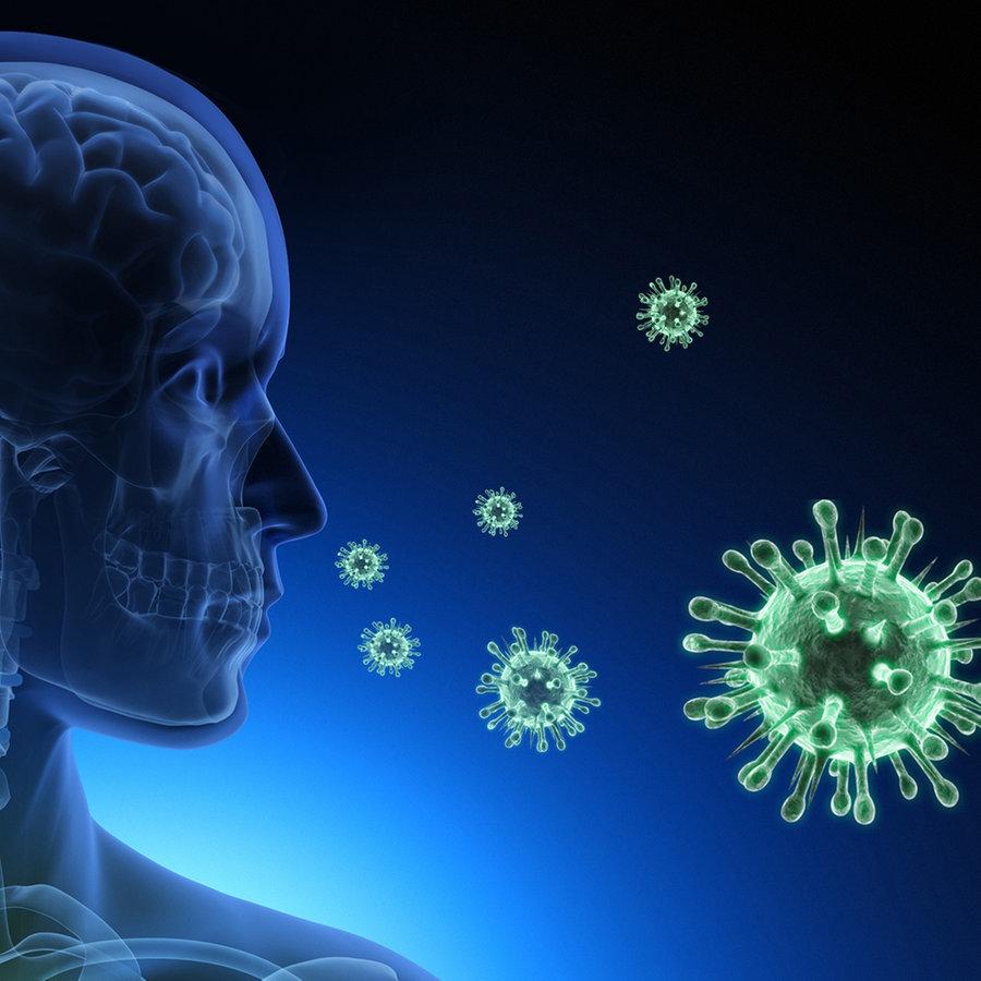 (3) Woher stammt das neue Coronavirus?