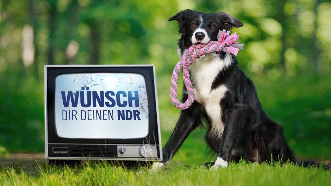Wünsch Dir Deinen NDR - Jetzt bewerben!