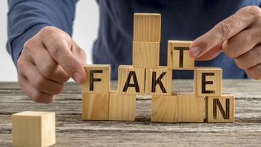 """Ein Mann spielt mit Bauklötzen, die den Aufdruck """"Fakten"""" in einzelnen Buchstaben haben. © fotolia.com Foto: Gajus Fakten"""