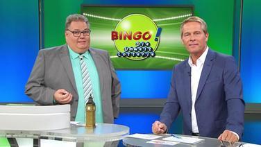 Bingo Spielen Ndr