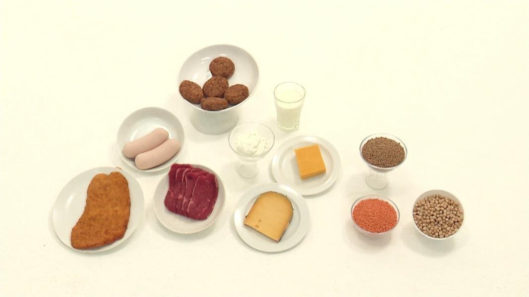 eiwei welche proteine sind gesund fernsehen sendungen a z visite. Black Bedroom Furniture Sets. Home Design Ideas