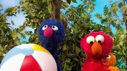 Grobi und Elmo.