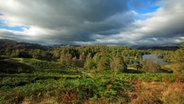 See und Herbstwald im Lake District Nationalpark © picture alliance / WILDLIFE Fotograf: WILDLIFE/R.Usher