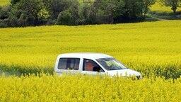 Auto fährt durch blühende Rapsfelder © dpa - Report Foto: Uwe Zucchi