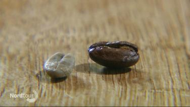 Zwei Kaffeebohnen liegen auf einem Tisch.