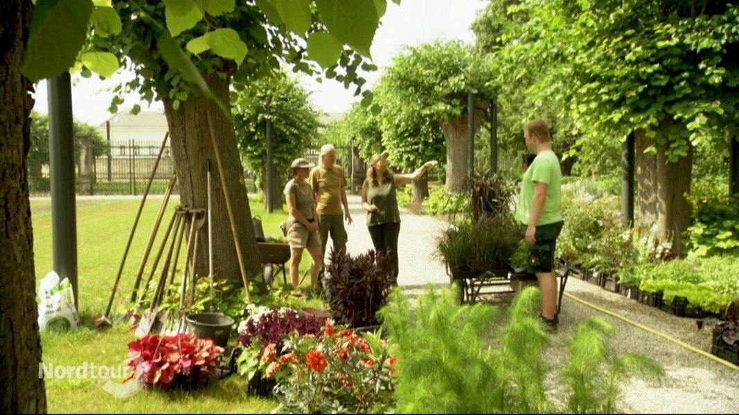 Staudenbeete Planen Und Bepflanzen Ndrde Ratgeber Garten