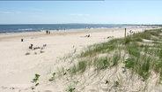 Bild eines Strandes.