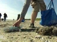 Ein Gruppe sammelt Plastikmüll am Strand der Insel Minsener Oog.