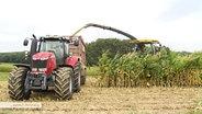 Zwei Traktoren auf einem Feld.