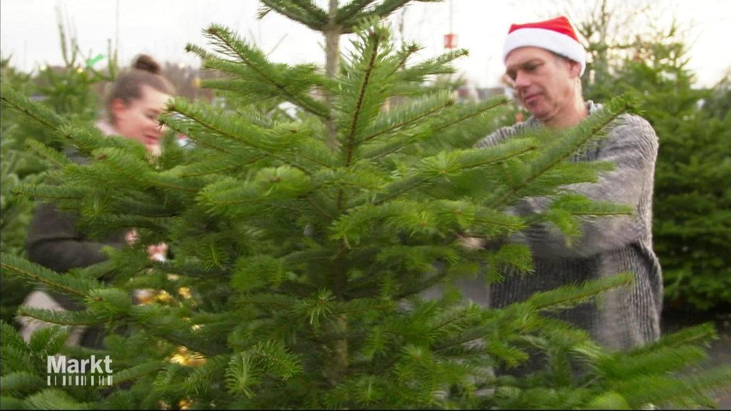 Tannenbaum Preise.Video Weihnachtsbäume Belastet Mit Pestiziden