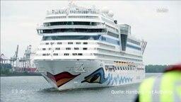AIDA Kreuzfahrtschiff läuft in den Hamburger Hafen ein.