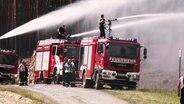Einsatzkräfte der Feuerwehr löschen beim Waldbrand in Lübtheen. © NDR