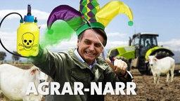 Präsident Bolsonaro in einer Fotomontage.