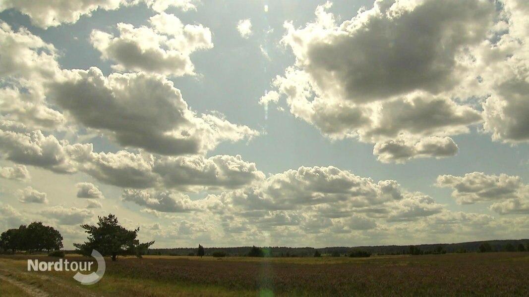 Karte Lüneburger Heide Und Umgebung.Video Traum In Lila Die Heide Blüht