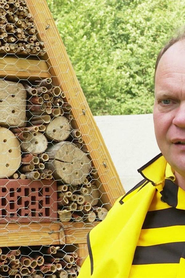 Auf dem Bienen- und Kräuterpfad in Wieda