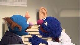 Sesamstrasse Folge 2847: Grobie ist HNO Arzt © NDR Foto: Torsten Jander