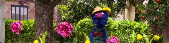 Gärtner Grobi kümmert sich um ein Blumenbeet. © NDR Foto: screenshot