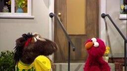 Elmo steht neben dem Pferd, das ein Sport-Shirt trägt.