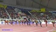 Start beim dritten Vorlauf über die 1.500 m der Männer