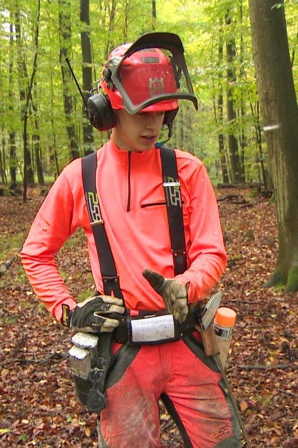 Holzernte: Künftige Forstwirte lernen ihr Handwerk