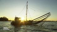 Das Boot des letzten Fischers vom Alten Land