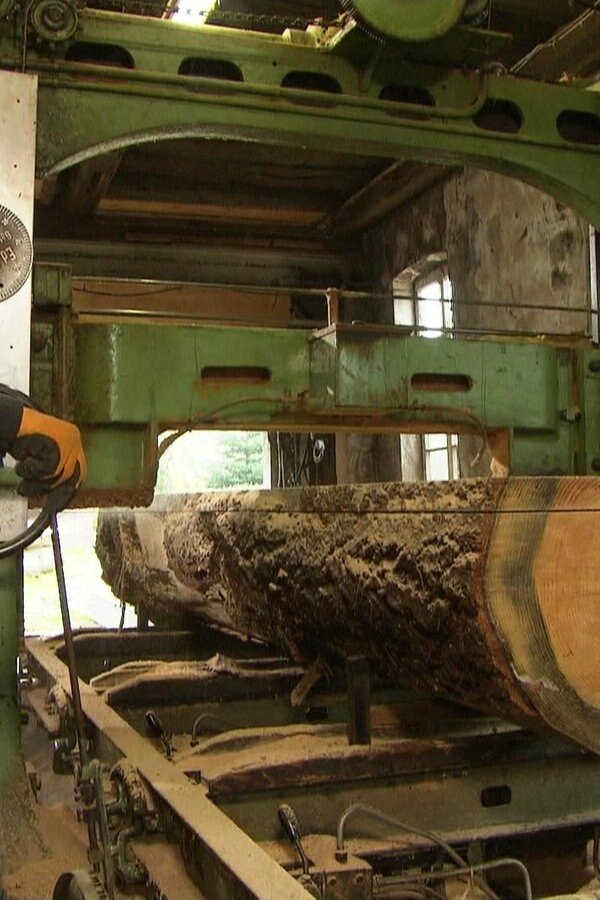 Rustikale Möbel aus dem Wald: