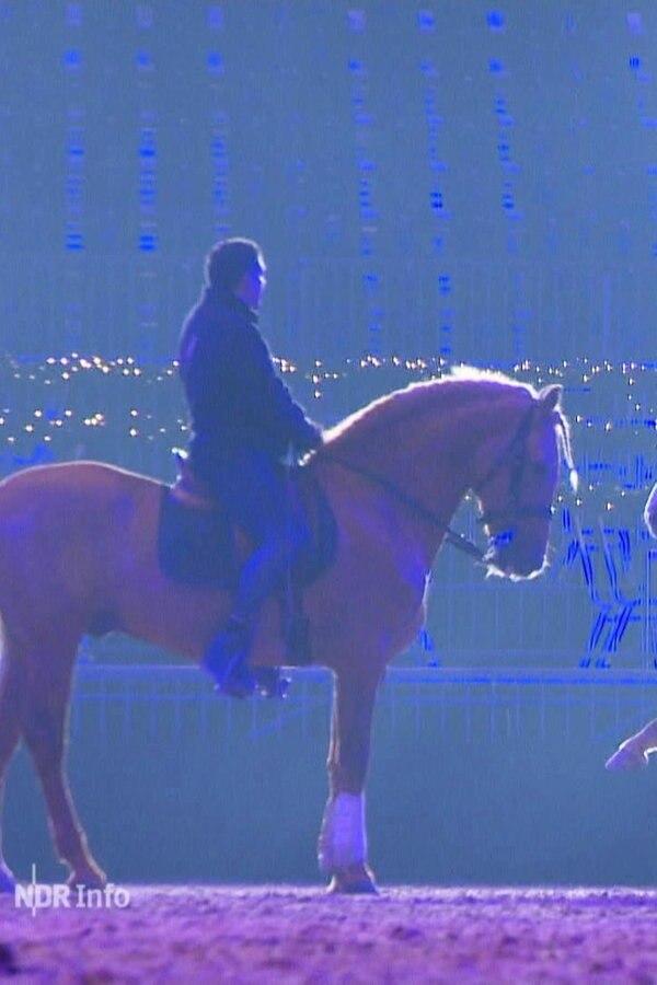 """Messe """"Pferd und Jagd"""" öffnet die Pforten"""