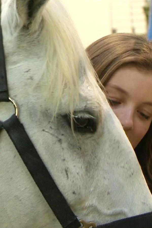 Messe Pferd Jagd: Probelauf für die Galashow