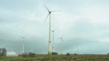 Eine Reihe Windräder stehen auf einem Feld.