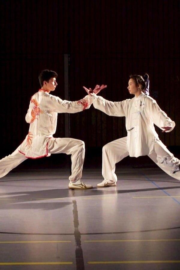 Asiatische Kampfkünstler aus Husum