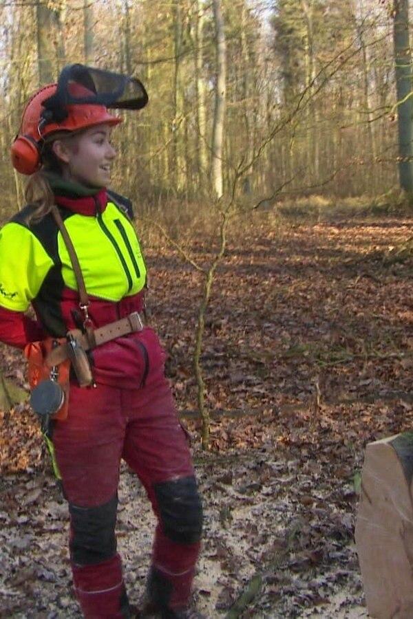 Baumfällung: Forstwirt-Azubis lernen ihr Handwerk