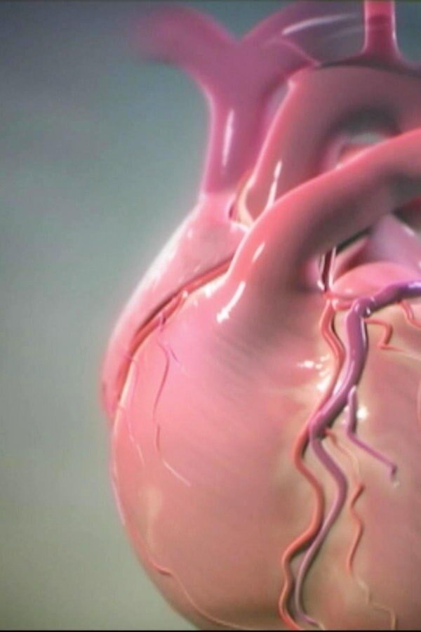 Was Tun Bei Herzschwäche