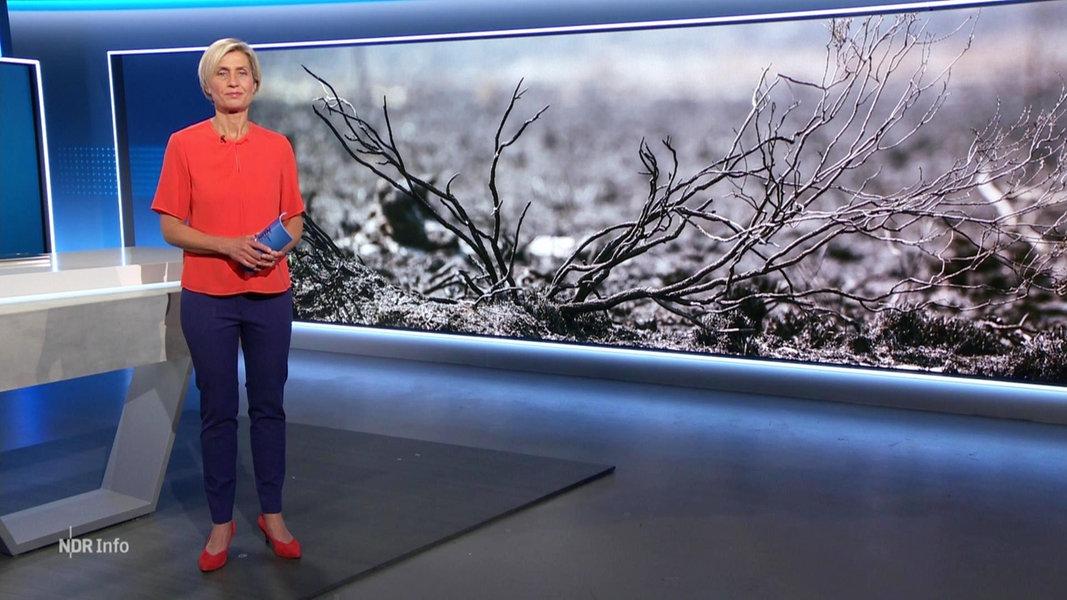 NDR Info 14:00 | 27.05.2020