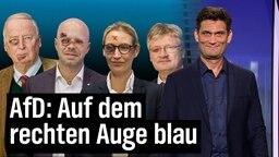 Gauland, Weidel, Kalbitz und Meuthen von der AfD mit blauem Auge. Davor Christian Ehring.