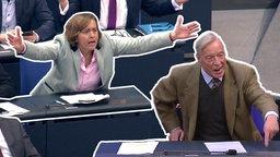 Wild gestikulierende Beatrix von Storch und Armin Paul Hampel von der AfD.