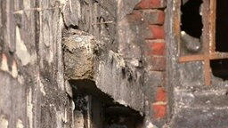 Rest eines Brandriegels an einer Fassade, an der die Polystyrol-Dämmung abgebrannt ist. © NDR