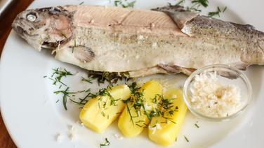 Forelle blau mit Kartoffeln und Meerrettich