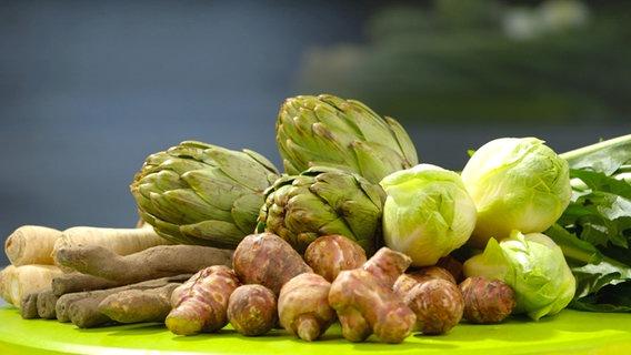 الخضار التي تحتوي على الإنولين: الخرشوف ، الهندباء ، الشيب ، الخرشوف القدس ، الجزر الأبيض ، الهندباء.  © NDR Photo: Oliver Zydek / Moritz Schwarz