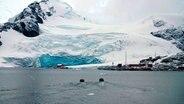 Argentinien und Chile betreiben viele Stationen in der Antarktis. © NDR/Michael Höft, honorarfrei