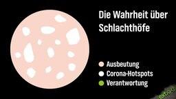 Die Wahrheit über Schlachthöfe in Form eines Mortadella-Diagramms.
