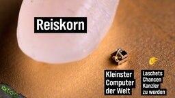 Abbildung unter Mikroskop: Reiskorn, kleinster Computer der Welt, Laschets Chancen Kanzler zu werden.